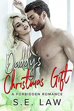 Daddy's Christmas Gift (Boyfriend Diaries 4) by S.E. Law