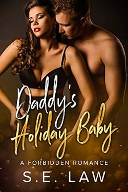 Daddy's Holiday Baby (Boyfriend Diaries 5) by S.E. Law
