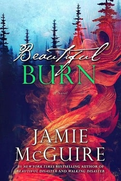 Beautiful Burn (The Maddox Brothers 4) by Jamie McGuire